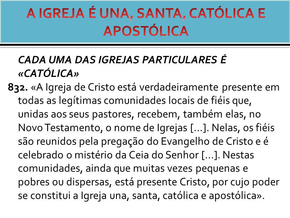 CADA UMA DAS IGREJAS PARTICULARES É «CATÓLICA» 832.