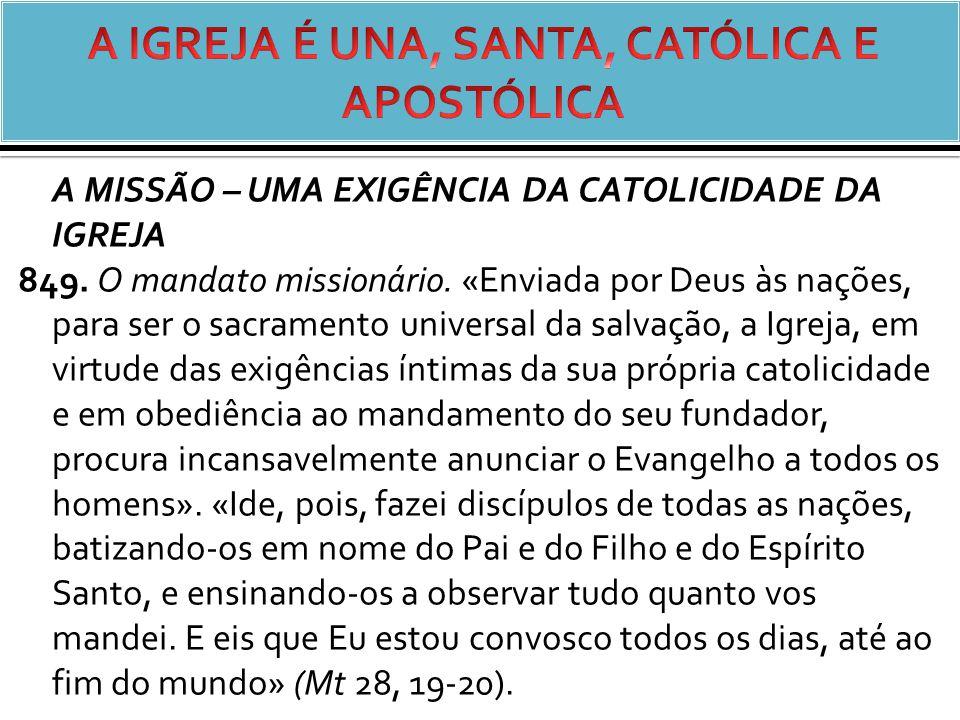 A MISSÃO – UMA EXIGÊNCIA DA CATOLICIDADE DA IGREJA 849.
