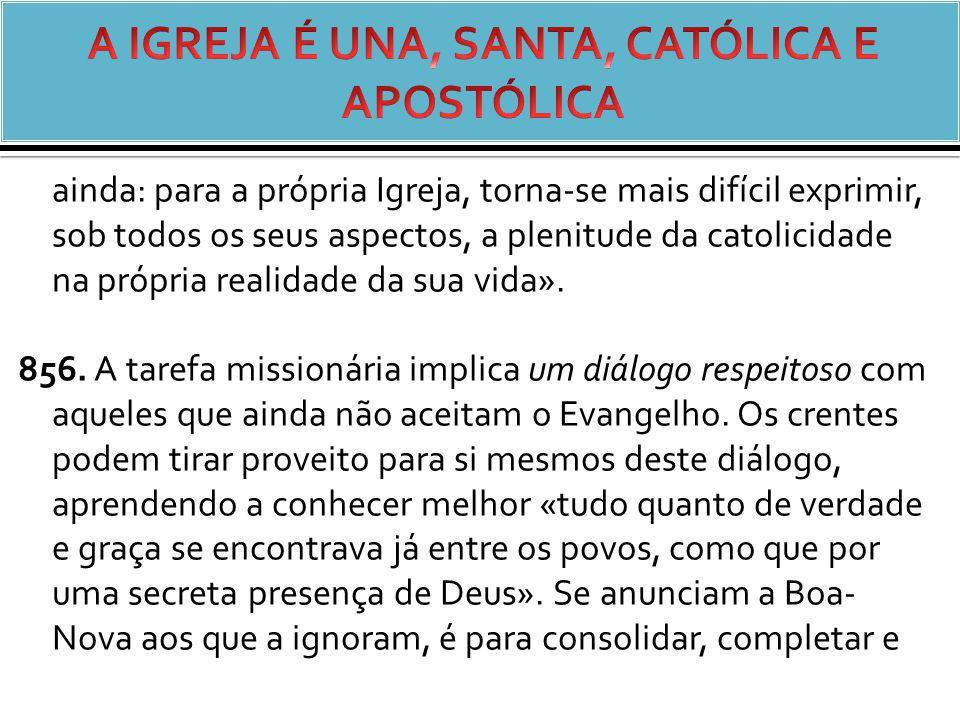 ainda: para a própria Igreja, torna-se mais difícil exprimir, sob todos os seus aspectos, a plenitude da catolicidade na própria realidade da sua vida».