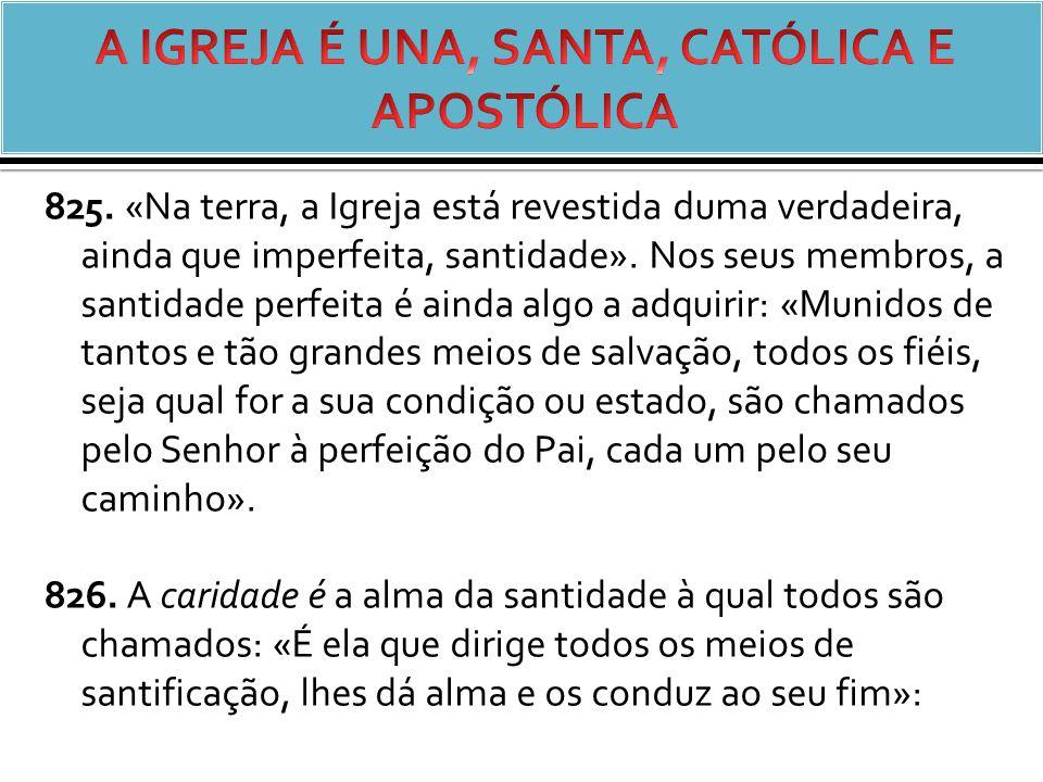 825.«Na terra, a Igreja está revestida duma verdadeira, ainda que imperfeita, santidade».