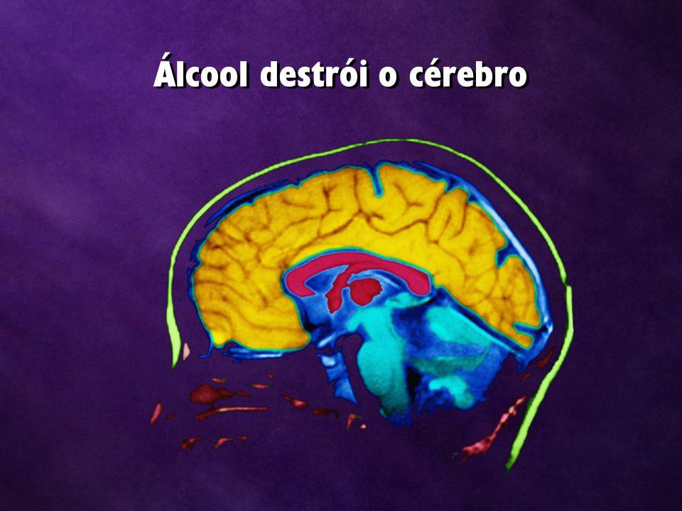 Álcool destrói o cérebro