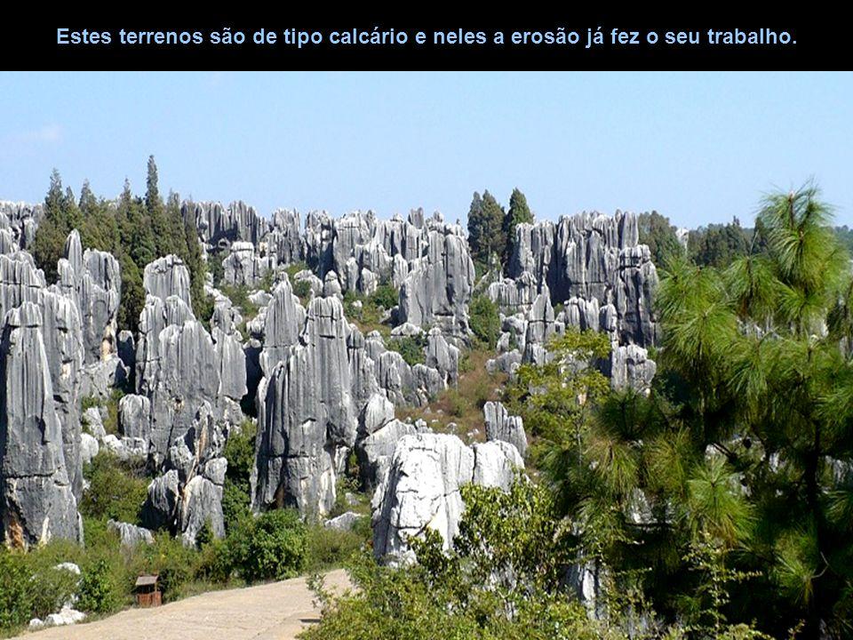 Estes terrenos são de tipo calcário e neles a erosão já fez o seu trabalho.