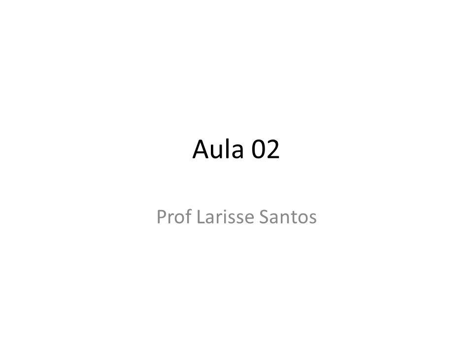Aula 02 Prof Larisse Santos