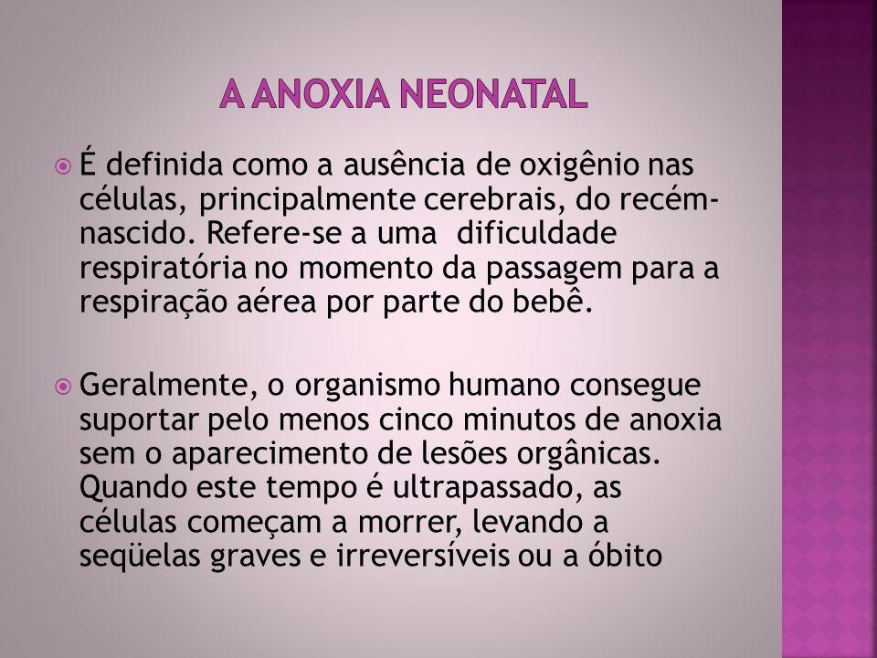 A anoxia neonatal é uma das maiores causas de deficiência mental no Brasil.