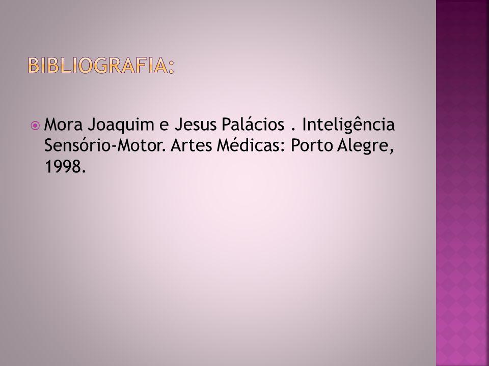  Mora Joaquim e Jesus Palácios. Inteligência Sensório-Motor. Artes Médicas: Porto Alegre, 1998.