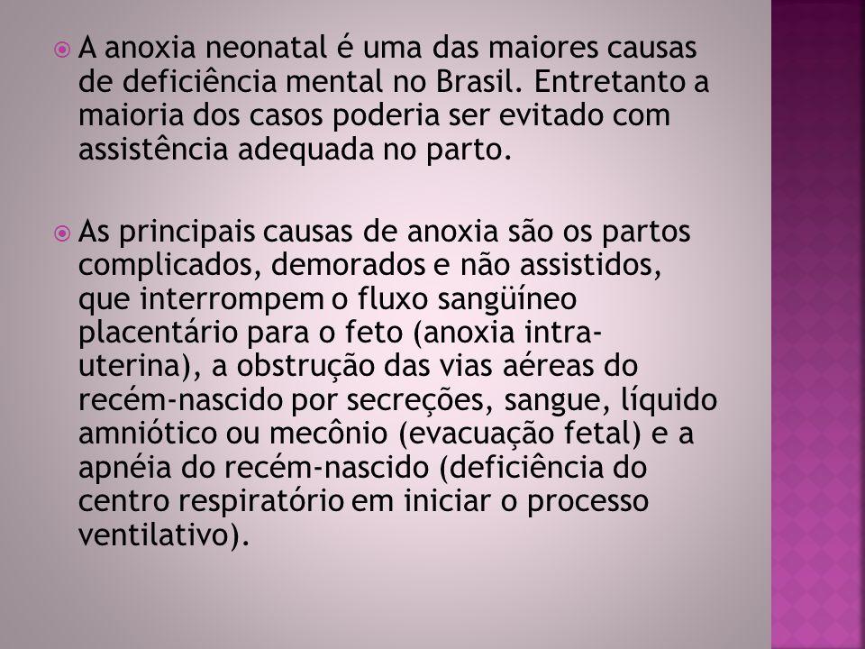  A anoxia neonatal é uma das maiores causas de deficiência mental no Brasil. Entretanto a maioria dos casos poderia ser evitado com assistência adequ