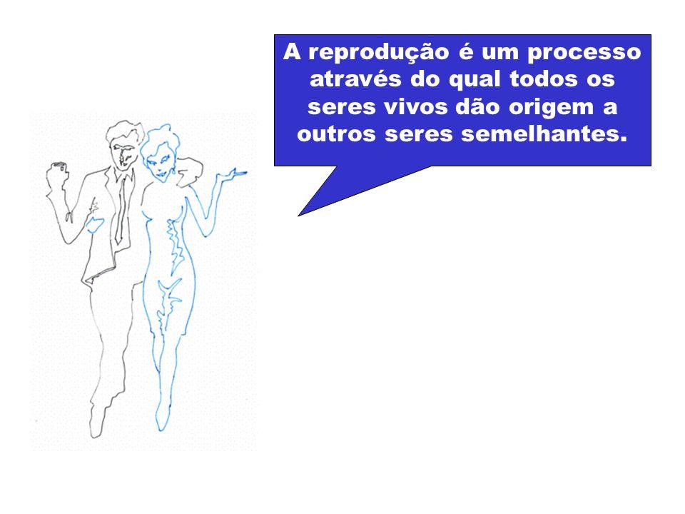 Para compreendermos a reprodução humana temos primeiro que conhecer o aparelho reprodutor feminino e o aparelho reprodutor masculino