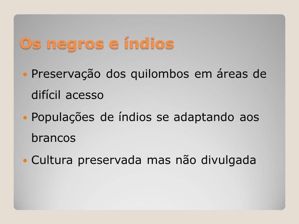 Os negros e índios  Preservação dos quilombos em áreas de difícil acesso  Populações de índios se adaptando aos brancos  Cultura preservada mas não