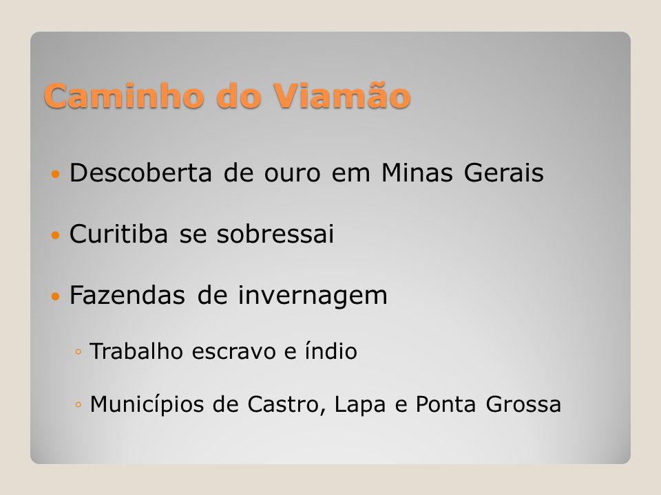 Caminho do Viamão  Descoberta de ouro em Minas Gerais  Curitiba se sobressai  Fazendas de invernagem ◦Trabalho escravo e índio ◦Municípios de Castr