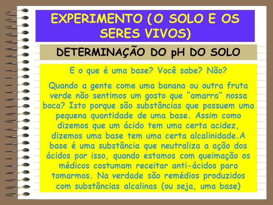 EXPERIMENTO ( O SOLO E OS SERES VIVOS) E o que é uma base? Você sabe? Não? Quando a gente come uma banana ou outra fruta verde não sentimos um gosto q