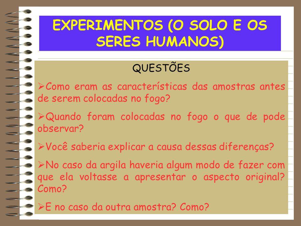 EXPERIMENTOS (O SOLO E OS SERES HUMANOS) QUESTÕES  Como eram as características das amostras antes de serem colocadas no fogo?  Quando foram colocad