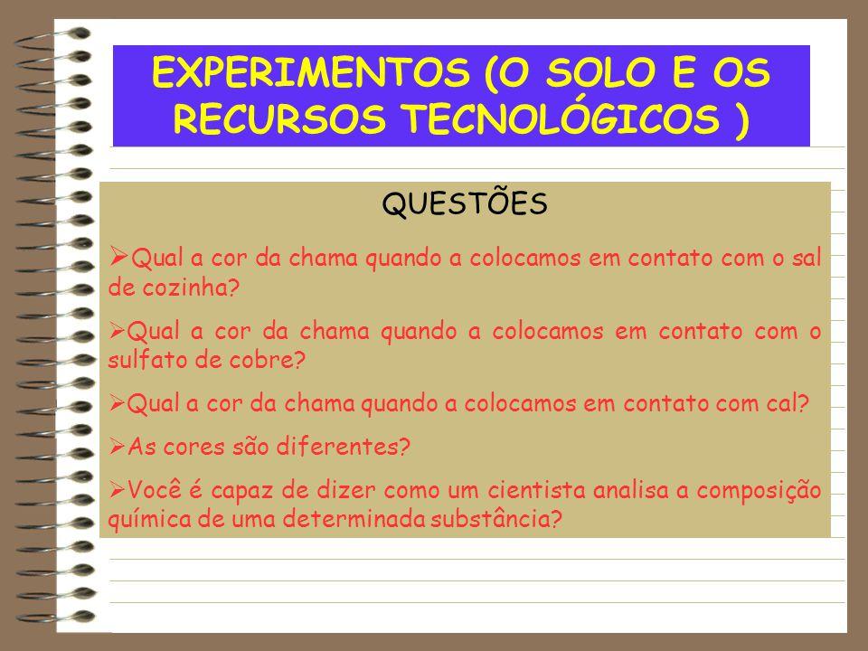 EXPERIMENTOS (O SOLO E OS RECURSOS TECNOLÓGICOS ) QUESTÕES  Qual a cor da chama quando a colocamos em contato com o sal de cozinha?  Qual a cor da c