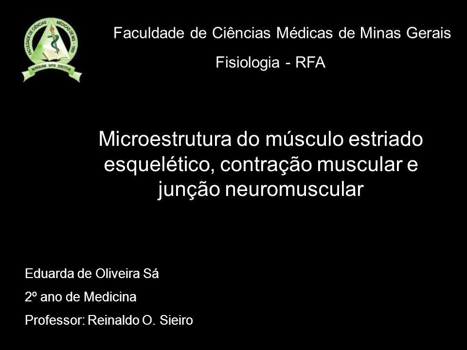 Eduarda de Oliveira Sá 2º ano de Medicina Professor: Reinaldo O. Sieiro Faculdade de Ciências Médicas de Minas Gerais Fisiologia - RFA Microestrutura