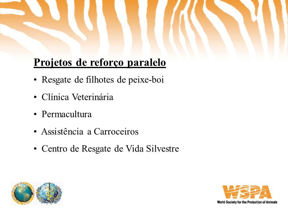 Projetos de reforço paralelo • Resgate de filhotes de peixe-boi • Clínica Veterinária • Permacultura • Assistência a Carroceiros • Centro de Resgate d