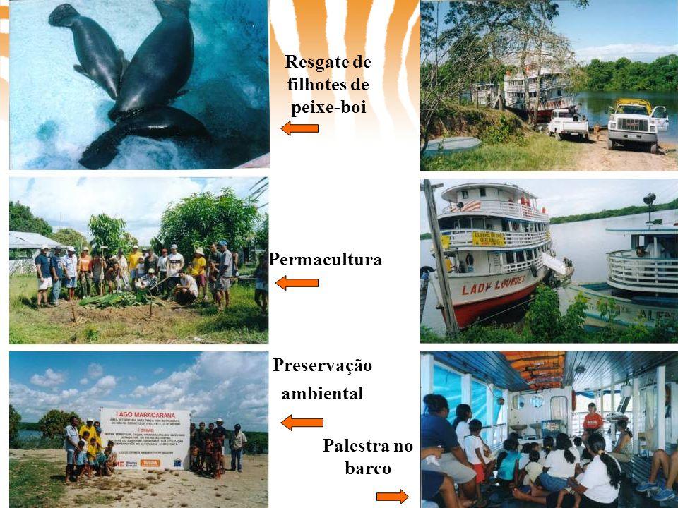 Preservação ambiental Permacultura Resgate de filhotes de peixe-boi Palestra no barco