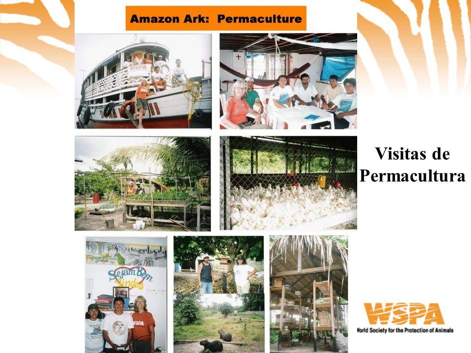 Visitas de Permacultura