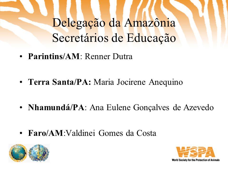 Delegação da Amazônia Secretários de Educação •Parintins/AM: Renner Dutra •Terra Santa/PA: Maria Jocirene Anequino •Nhamundá/PA: Ana Eulene Gonçalves