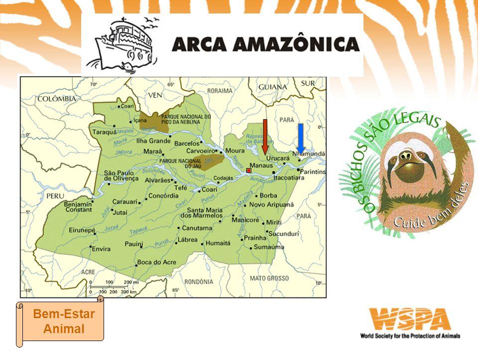 PROJETO ARCA AMAZÔNICA Projeto Educativo Programa Respeito a Todas as Formas de Vida – Dra.
