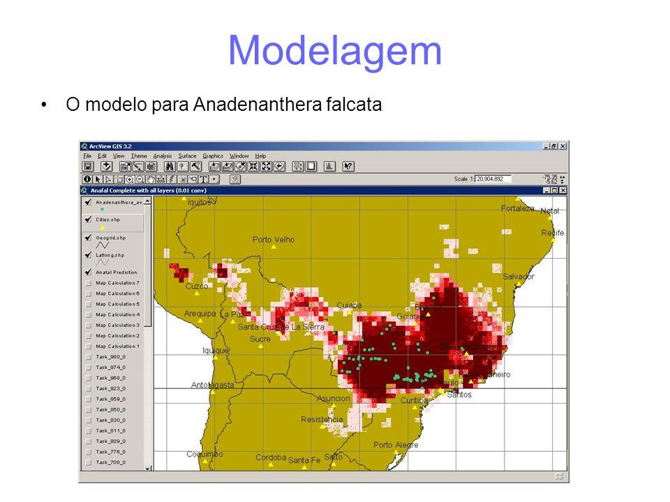 Modelagem •O modelo para Anadenanthera falcata