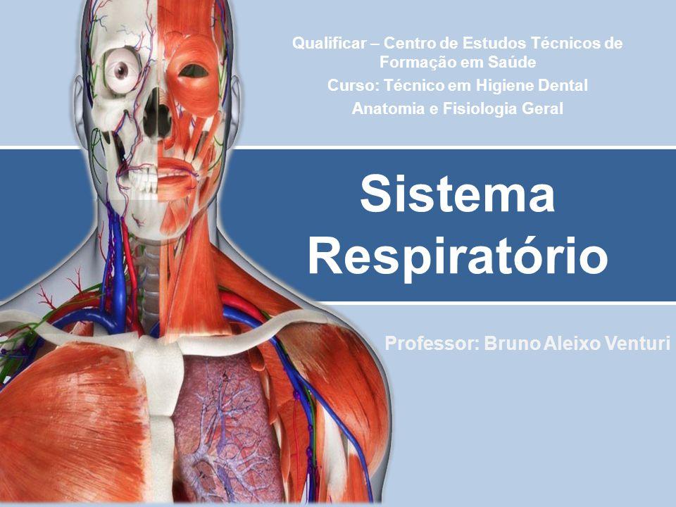 Professor: Bruno Aleixo Venturi Sistema Respiratório Qualificar – Centro de Estudos Técnicos de Formação em Saúde Curso: Técnico em Higiene Dental Ana