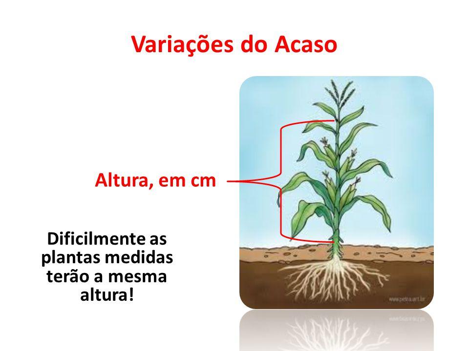 Variações do Acaso Altura, em cm Dificilmente as plantas medidas terão a mesma altura!