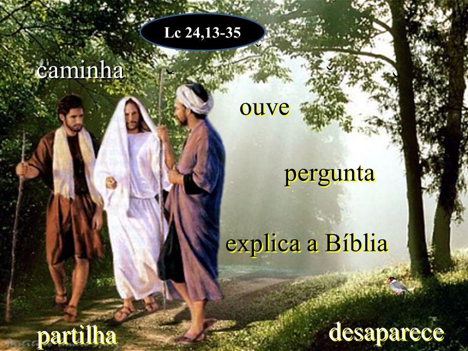 explica a Bíblia partilha ouve pergunta desaparece caminha Lc 24,13-35