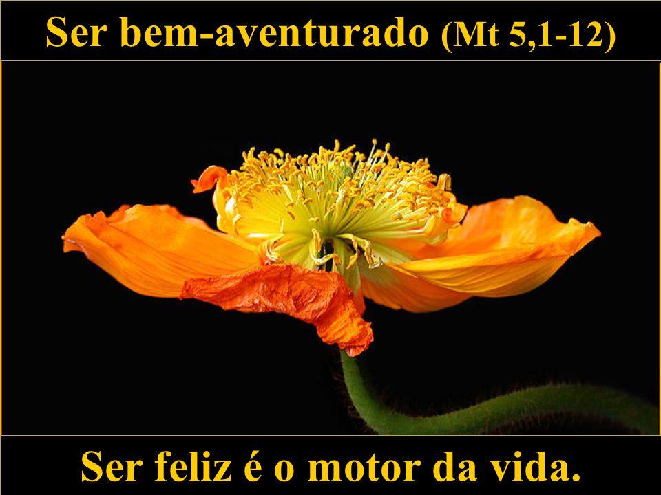 Ser bem-aventurado (Mt 5,1-12) Ser bem-aventurado (Mt 5,1-12) Ser feliz é o motor da vida.