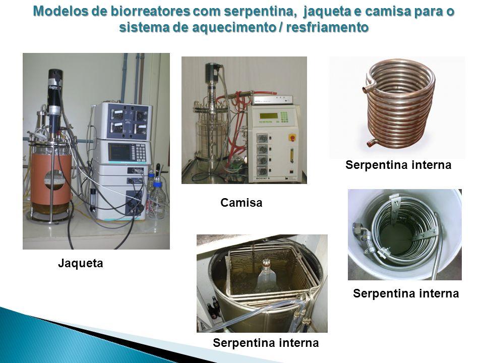 Modelos de biorreatores com serpentina, jaqueta e camisa para o sistema de aquecimento / resfriamento Jaqueta Camisa Serpentina interna