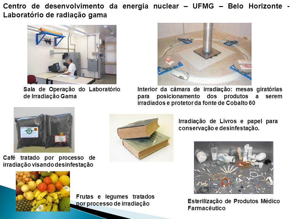 Interior da câmara de irradiação: mesas giratórias para posicionamento dos produtos a serem irradiados e protetor da fonte de Cobalto 60 Sala de Opera