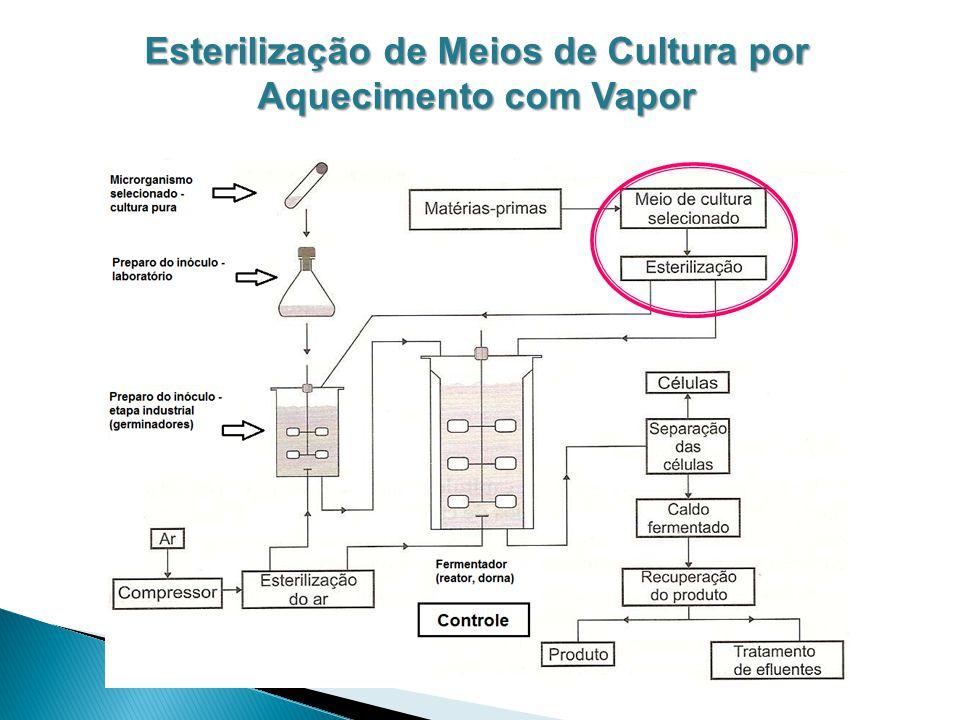 Esterilização de Meios de Cultura por Aquecimento com Vapor