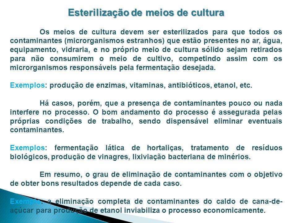 Esterilização de meios de cultura Os meios de cultura devem ser esterilizados para que todos os contaminantes (microrganismos estranhos) que estão pre