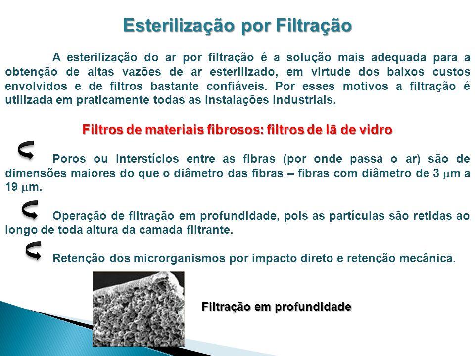 Esterilização por Filtração A esterilização do ar por filtração é a solução mais adequada para a obtenção de altas vazões de ar esterilizado, em virtu