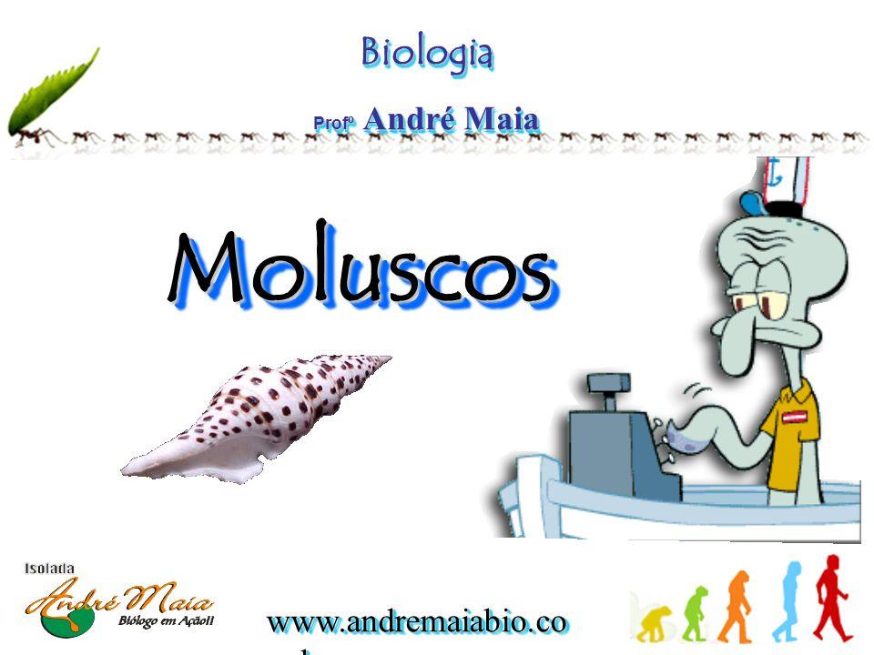 www.andremaiabio.co m.br Molusco s •Os moluscos são animais de corpo mole, não segmentado, provido ou não de conchas calcárias.