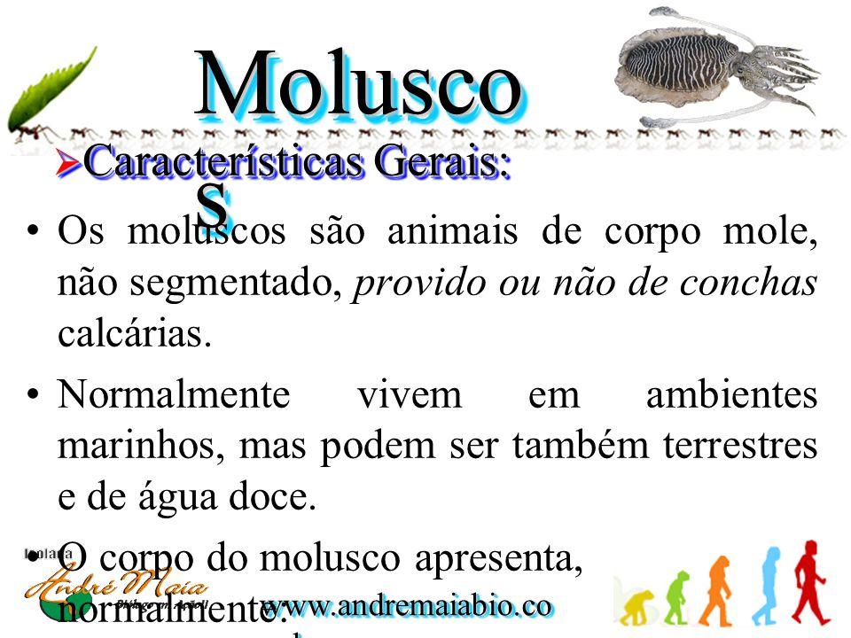 www.andremaiabio.co m.br Molusco s •Os moluscos são animais de corpo mole, não segmentado, provido ou não de conchas calcárias. •Normalmente vivem em