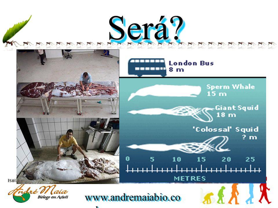 www.andremaiabio.co m.br Será?Será?