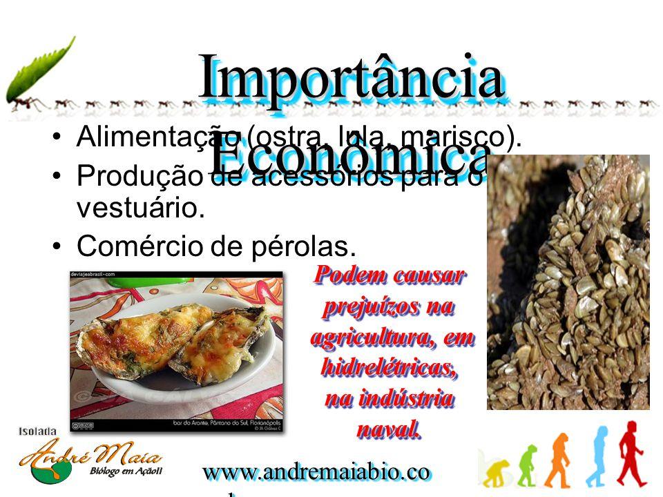 www.andremaiabio.co m.br Importância Econômica •Alimentação (ostra, lula, marisco). •Produção de acessórios para o vestuário. •Comércio de pérolas. Po