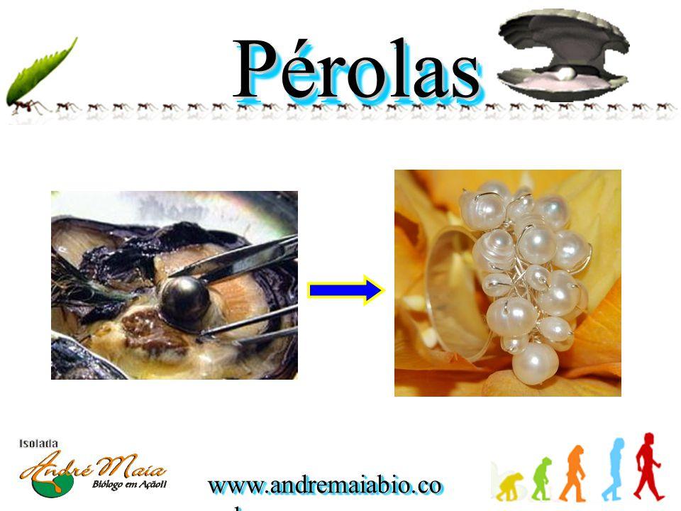 www.andremaiabio.co m.br PérolasPérolas