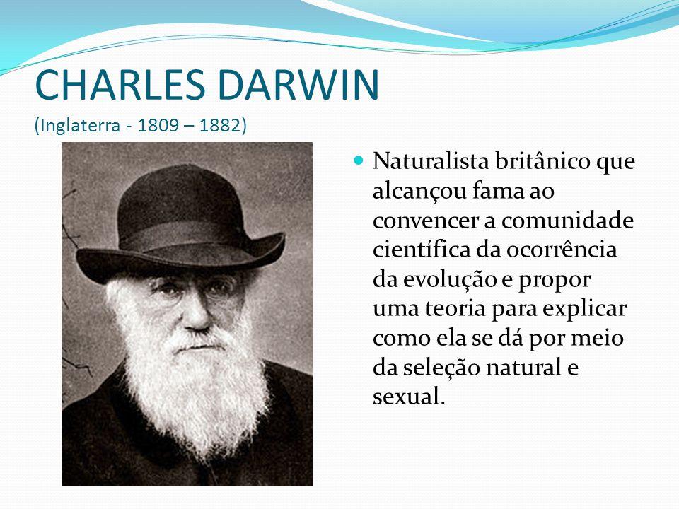 CHARLES DARWIN (Inglaterra - 1809 – 1882)  Naturalista britânico que alcançou fama ao convencer a comunidade científica da ocorrência da evolução e p