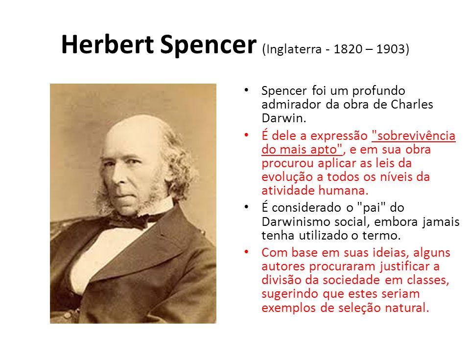 Herbert Spencer (Inglaterra - 1820 – 1903) • Spencer foi um profundo admirador da obra de Charles Darwin. • É dele a expressão