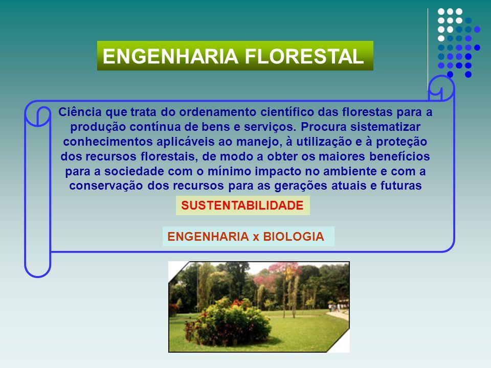 Ciência que trata do ordenamento científico das florestas para a produção contínua de bens e serviços. Procura sistematizar conhecimentos aplicáveis a