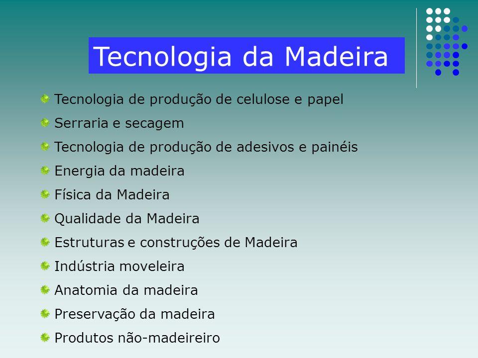 Tecnologia da Madeira Tecnologia de produção de celulose e papel Serraria e secagem Tecnologia de produção de adesivos e painéis Energia da madeira Fí