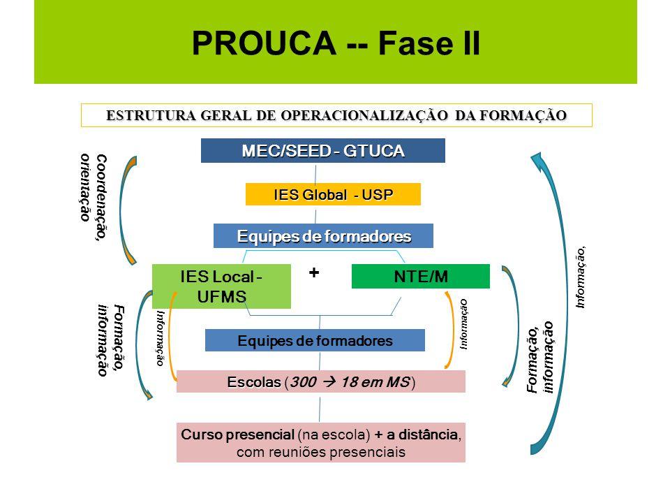 PROUCA -- Fase II ESTRUTURA GERAL DE OPERACIONALIZAÇÃO DA FORMAÇÃO MEC/SEED - GTUCA IES Global - USP IES Local - UFMS NTE/M + Equipes de formadores Cu