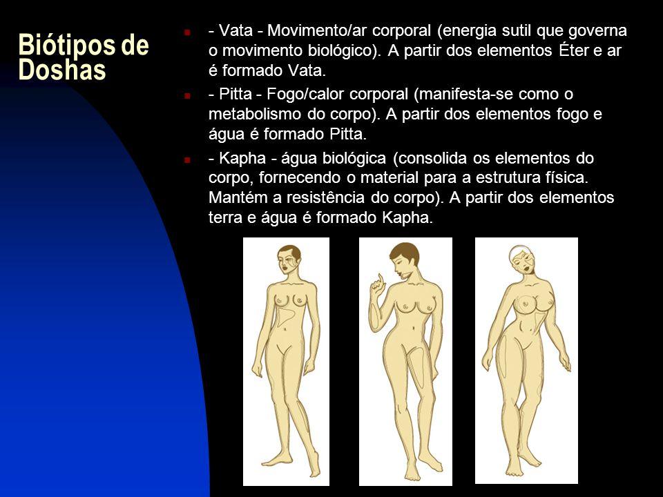  - Vata - Movimento/ar corporal (energia sutil que governa o movimento biológico).