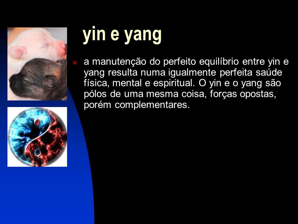 yin e yang  a manutenção do perfeito equilíbrio entre yin e yang resulta numa igualmente perfeita saúde física, mental e espiritual.