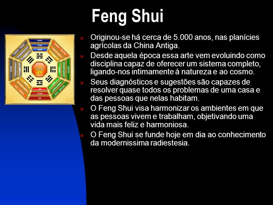 Feng Shui  Originou-se há cerca de 5.000 anos, nas planícies agrícolas da China Antiga.