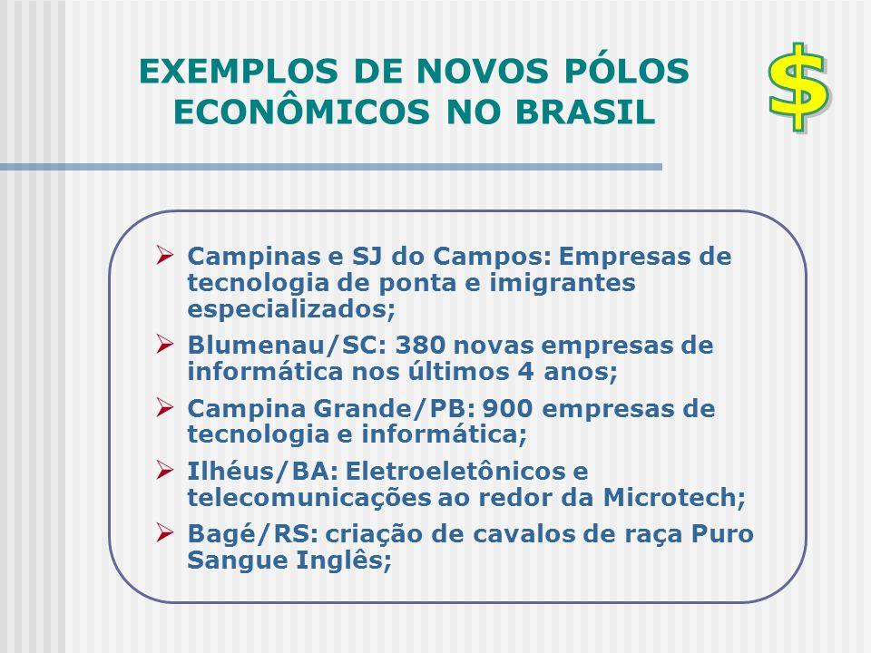 EXEMPLOS DE NOVOS PÓLOS ECONÔMICOS NO BRASIL  Campinas e SJ do Campos: Empresas de tecnologia de ponta e imigrantes especializados;  Blumenau/SC: 38