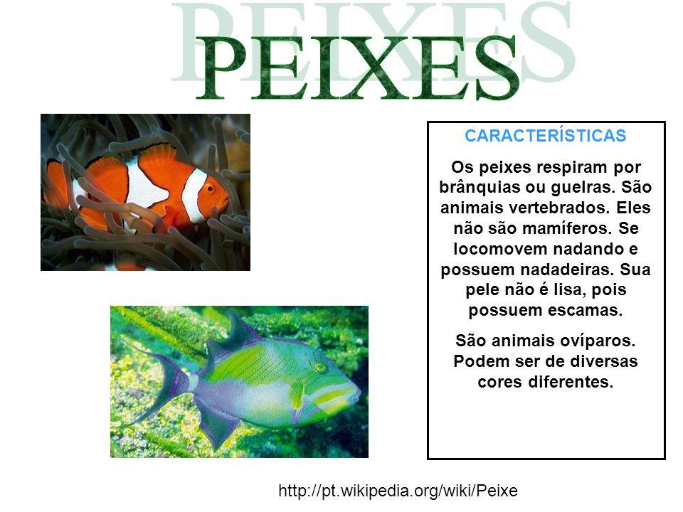 CARACTERÍSTICAS Os peixes respiram por brânquias ou guelras. São animais vertebrados. Eles não são mamíferos. Se locomovem nadando e possuem nadadeira