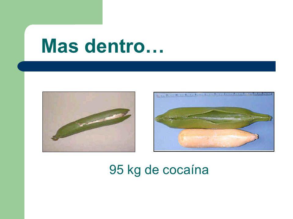 95 kg de cocaína Mas dentro…