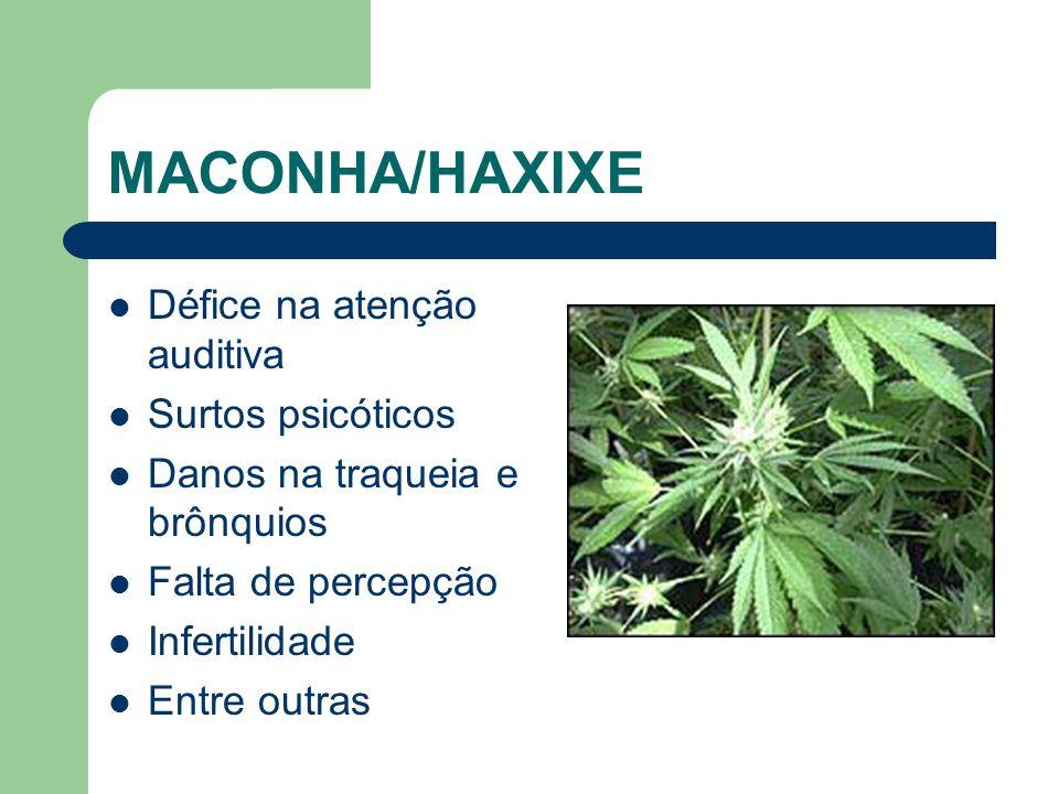 Veja o efeito das drogas nas pessoas