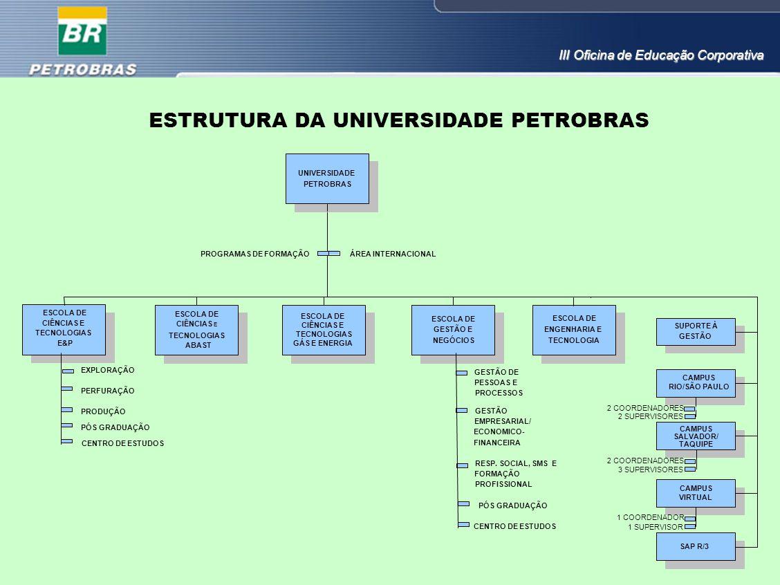 ESTRUTURA DA UNIVERSIDADE PETROBRAS UNIVERSIDADE PETROBRAS ESCOLA DE CIÊNCIAS E TECNOLOGIAS GÁS E ENERGIA ESCOLA DE GESTÃO E NEGÓCIOS ESCOLA DE CIÊNCI